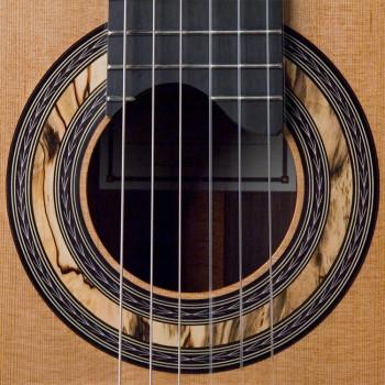 Macassar Ebony Classical Guitar Rosette