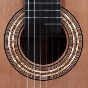 guitar-rosettte
