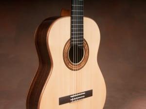 indian rosewood guitar