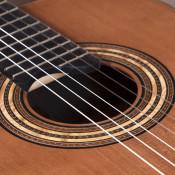 Cedar top Indian rosewood classical guitar by John Bogdanovich