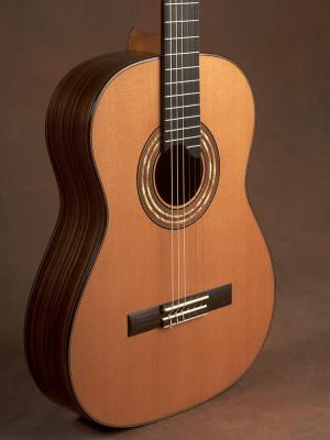 indian rosewood cedar top guitar