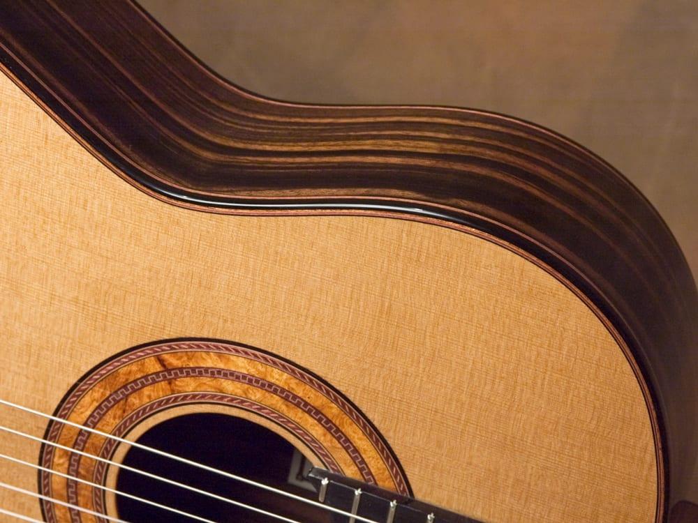 Something Macassar ebony guitar congratulate, simply